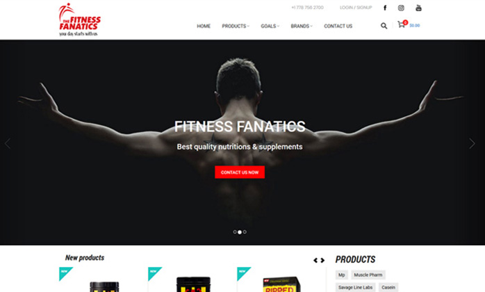 The Fitness Fanatics